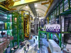 The LHCb Muon system at the European Organisation for Nuclear Research Large Hadron Collider facility (Maximilien Brice, Julien Marius Ordan/CERN via AP)