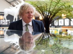 Prime Minister Boris Johnson said a review into Greensill Capital would have 'carte blanche' access (Justin Tallis/PA)