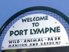 Port Lympne animal park in Kent is part of the Aspinall Foundation (PA)