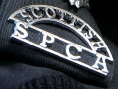 The Scottish SCPA has launched an investigation (Scottish SPCA/PA)