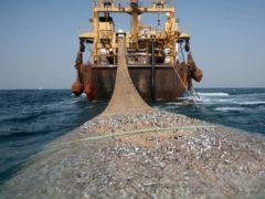 A super trawler off the coast of West Africa (Pierre Gleizes/ Greenpeace)