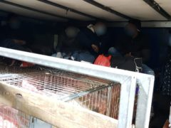A group of migrants found in the vehicle of Romanian lorry driver Sebastian Gabriel Podar (NCA/PA)
