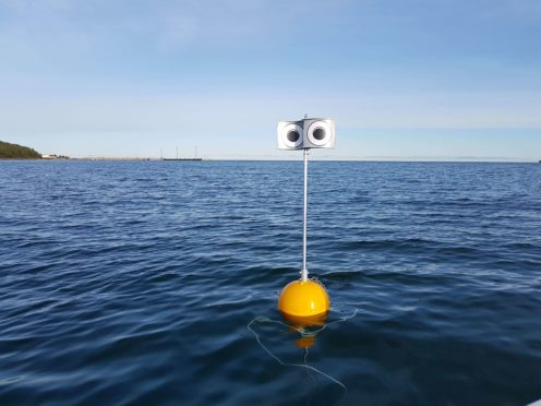 A 'looming-eyed buoy' deterrent deployed within the Kudema Bay, Estonia (Andres Kalamees/PA)