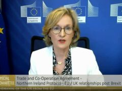 EU Financial Services Commissioner Mairead McGuinness speaking during an Irish parliamentary meeting on Tuesday (Screengrab from Oireachtas TV/PA Wire)