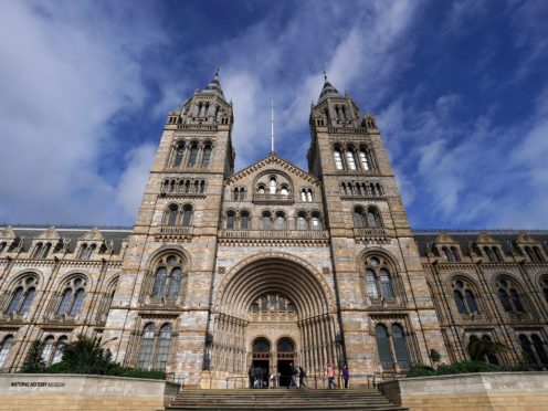 The Natural History Museum in London will receive a tranche of cash (John Walton/PA)