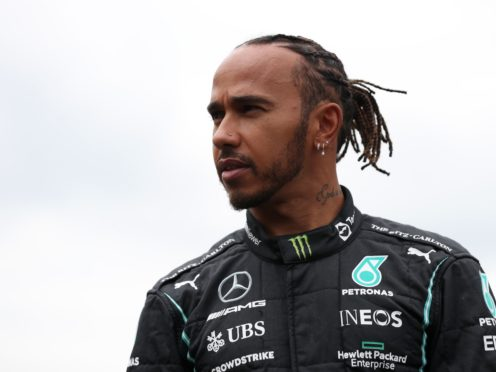 Lewis Hamilton was racially abused after the British Grand Prix (Bradley Collyer/PA)