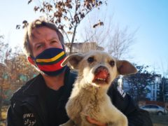 Pen Farthing is trying to leave Afghanistan (Nowzad/PA)