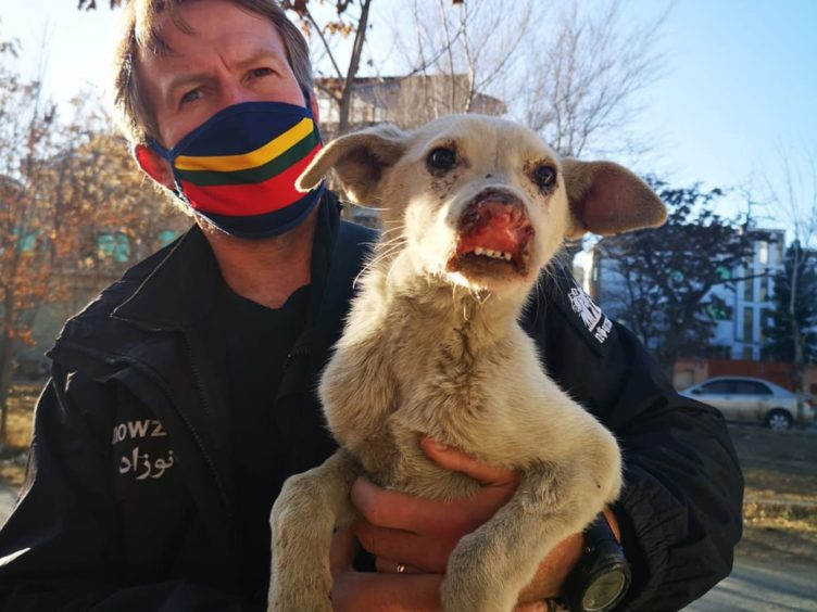 Paul Farthing, founder of animal rescue charity Nowzad (Nowzard/PA)