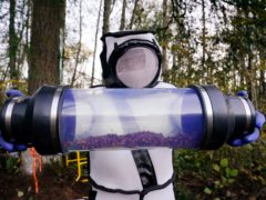 A canister of Asian giant hornets (Elaine Thompson/AP)