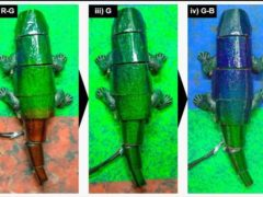 The robot crawls on the background and changes its skin colour (Seung Hwan Ko/Seoul National University)