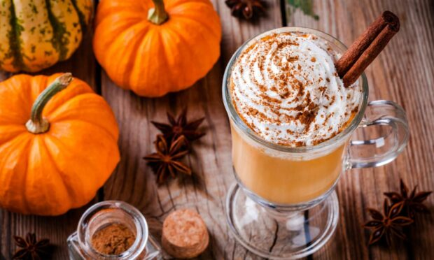 Why is pumpkin spice so popular and where did it originate?
