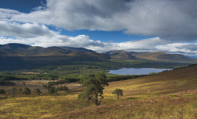 Looking south to Loch Morlich from Meall a'Buachaille
