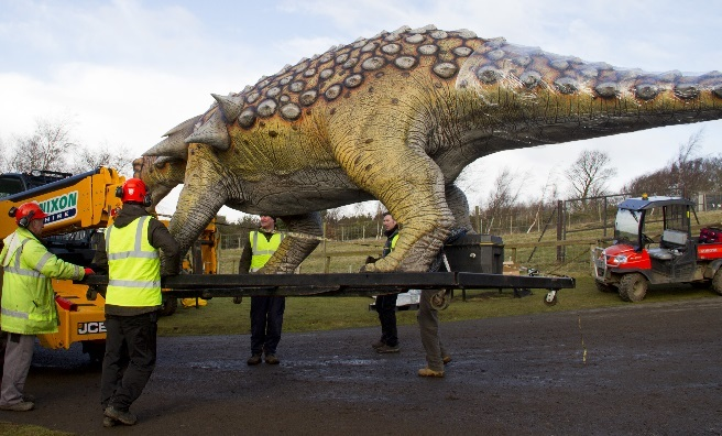 Edmontonia is taken to his new home at the highest point of Edinburgh Zoo