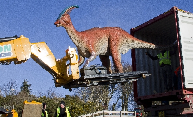 Parasaurolophus is carefully removed from his shipping container