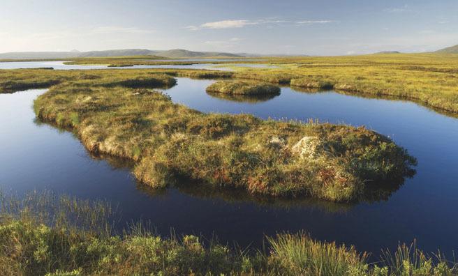 Peatlands in Sutherland