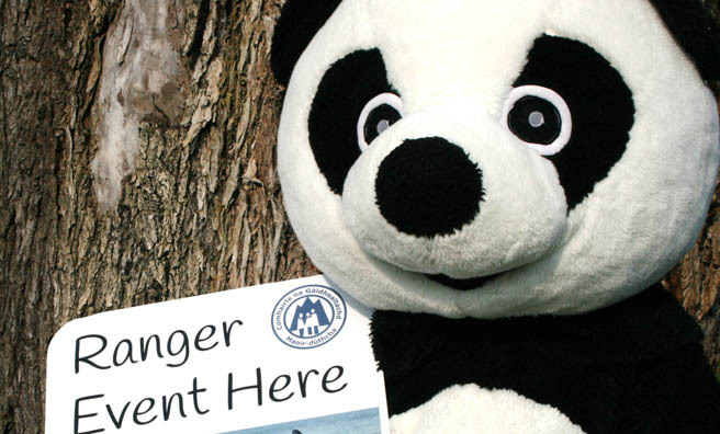 Get involved with WWF's Earth Hour with the Highland Council Rangers. Image: Highland Council