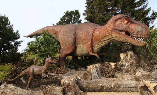 The mighty T-Rex and his family are currently in residence at Edinburgh Zoo. Photo copyright RZSS