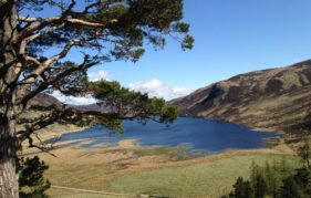The stunning view across Loch Lee from our coffee and scone vantage point