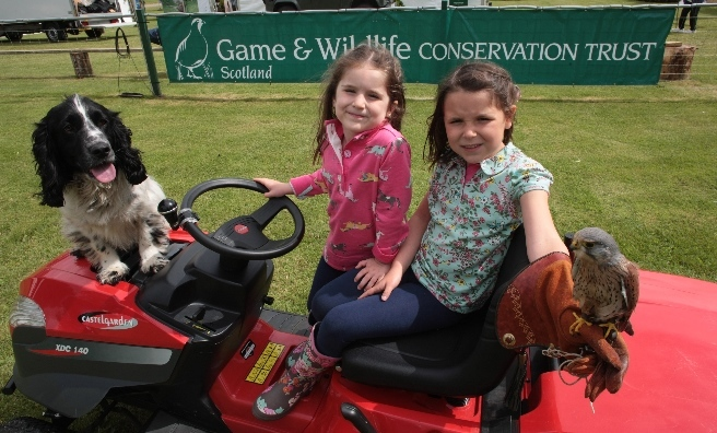 Off road vehicles, dogs, birds of prey... There's so much to do at the GWCT Scottish Game Fair