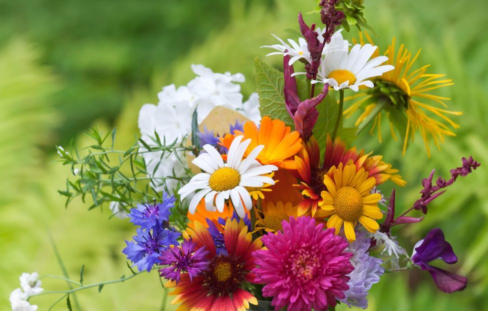 Our own garden flowers make the most beautiful displays. Pic: Shutterstock