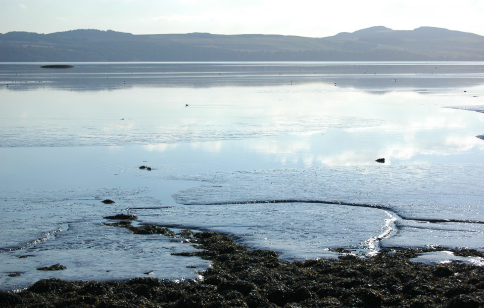 Calm as a mill pond - the Tay estuary has a life of its own.
