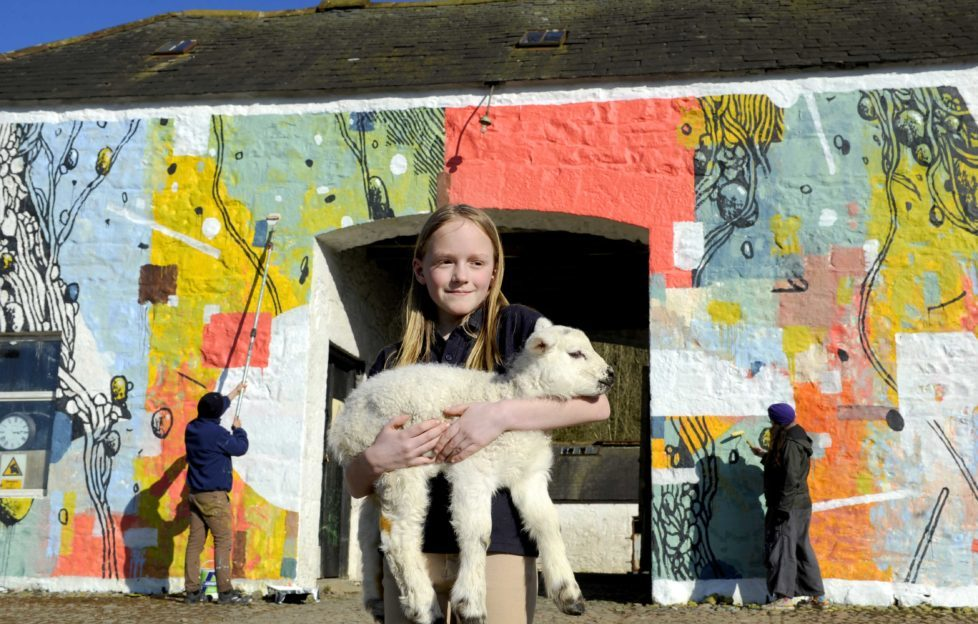 Abi Robertson (and Fluffy the lamb) outside the new mural at Meiklewood Farm