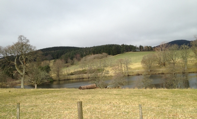 One of the many lovely views on our Stobo Stroll