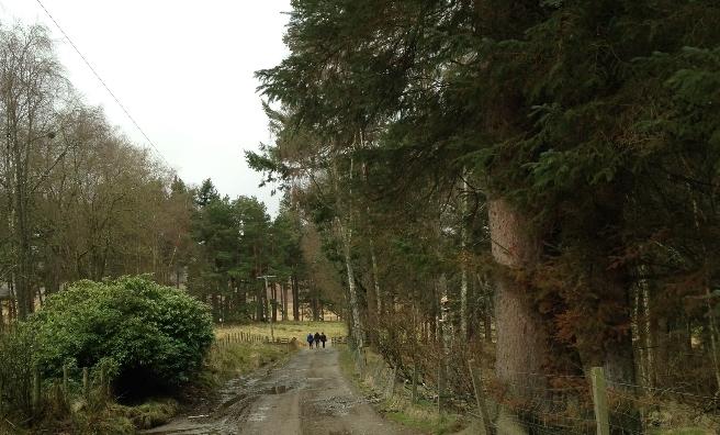 Heading off on our Stobo Sunday Stroll