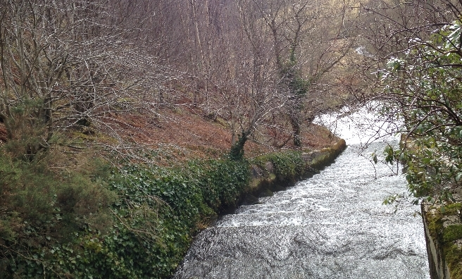 The salmon ladder from the loch to the burn