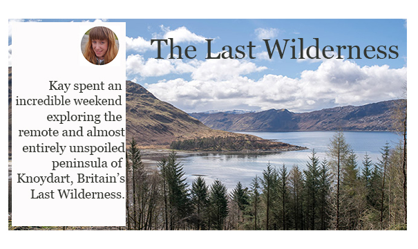 Last Wilderness Promo