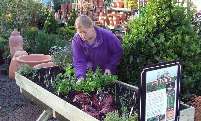The Potager to Plate project at new Hopetoun Gardens