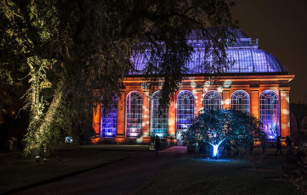 See Edinburgh's Botanic Gardens illuminated at night for the cleverly named Botanic Lights!