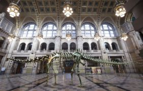 An image of Dippy superimposed into the Centre Hall at Kelvingrove Art Gallery and Museum @Glasgow Museums