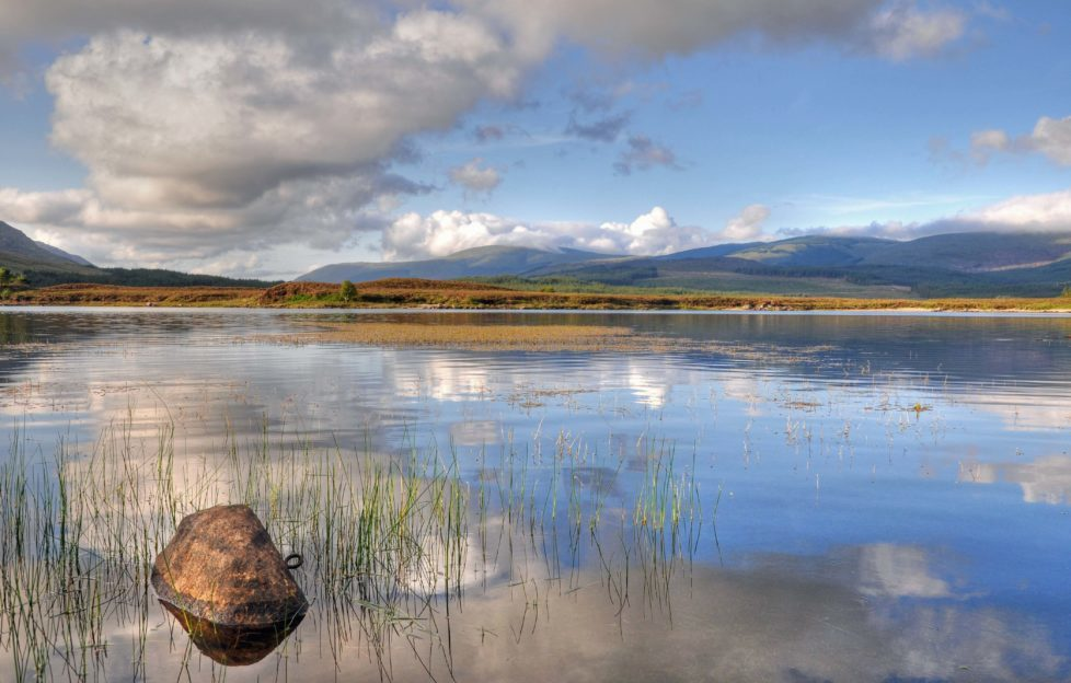 Discover the best of Dumfries and Galloway with our Focus On. Pic: Mark Mckie