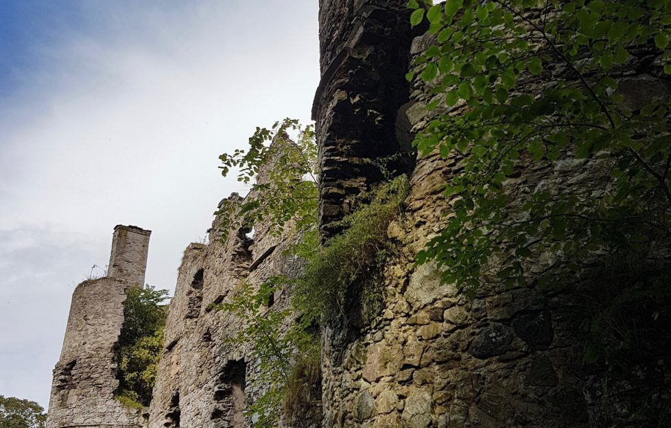 Boyne Castle up close. Pic: David Weinczok.