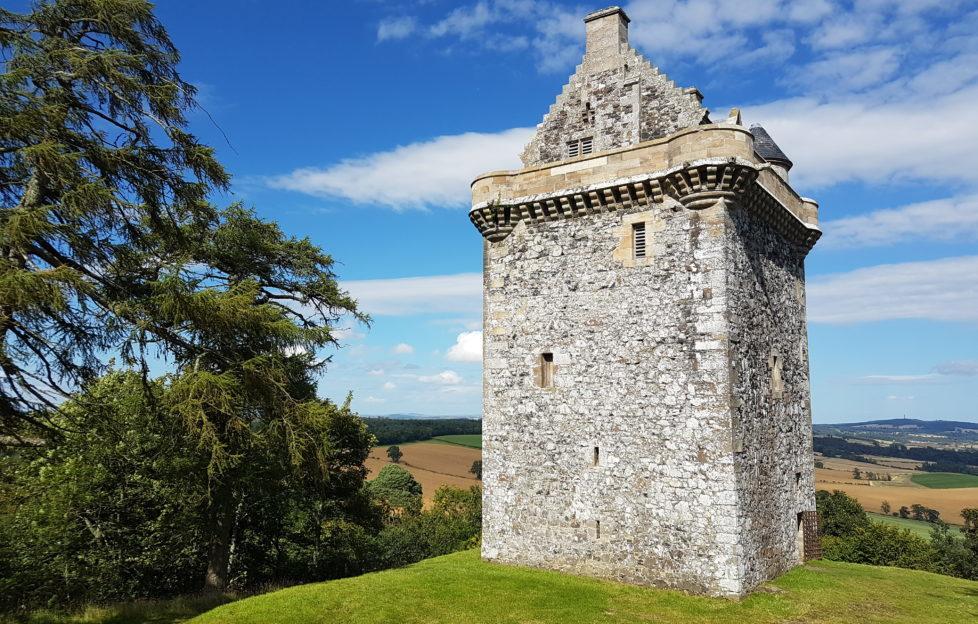 Fatlips Castle