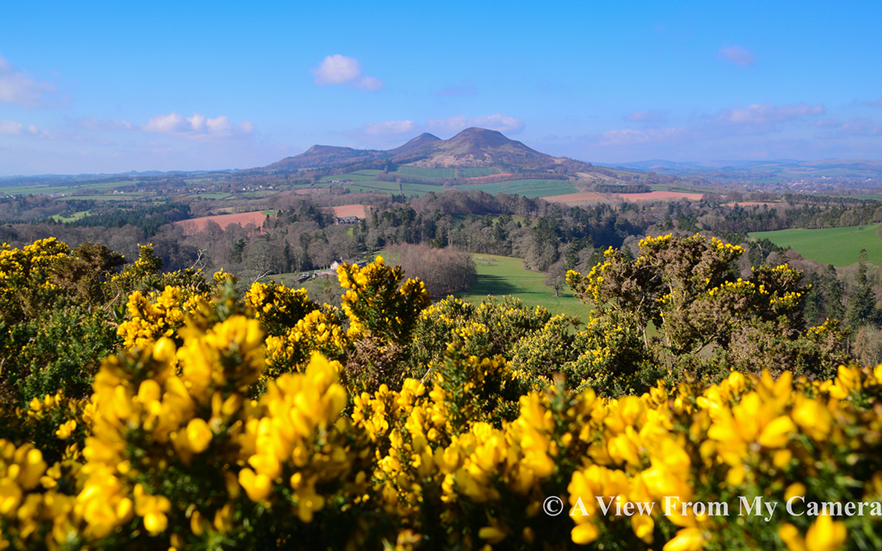 """Eildon Hills from Scott's Viewpoint in Scottish Borders. And what a stunning view it is too!"" A View From My Camera, @viewcamera on Facebook."