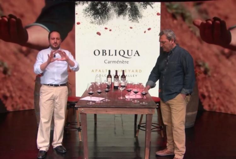 Carmenere is the star of Ventisquero's new Obliqua wine