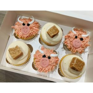 Aberdeen baker creates Highland Cow cupcakes for Burns Night