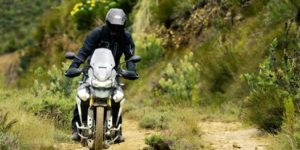Aberdeen motorcycle dealership to hold Triumph Tiger 900 launch event