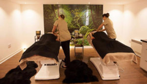 Aberdeen's Citi Spa closes after firm goes into liquidation