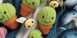 Make your own cute crochet cactus at this workshop in Aberdeen