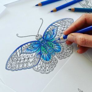 North-east illustrator Johanna Basford releases free online drawing lessons