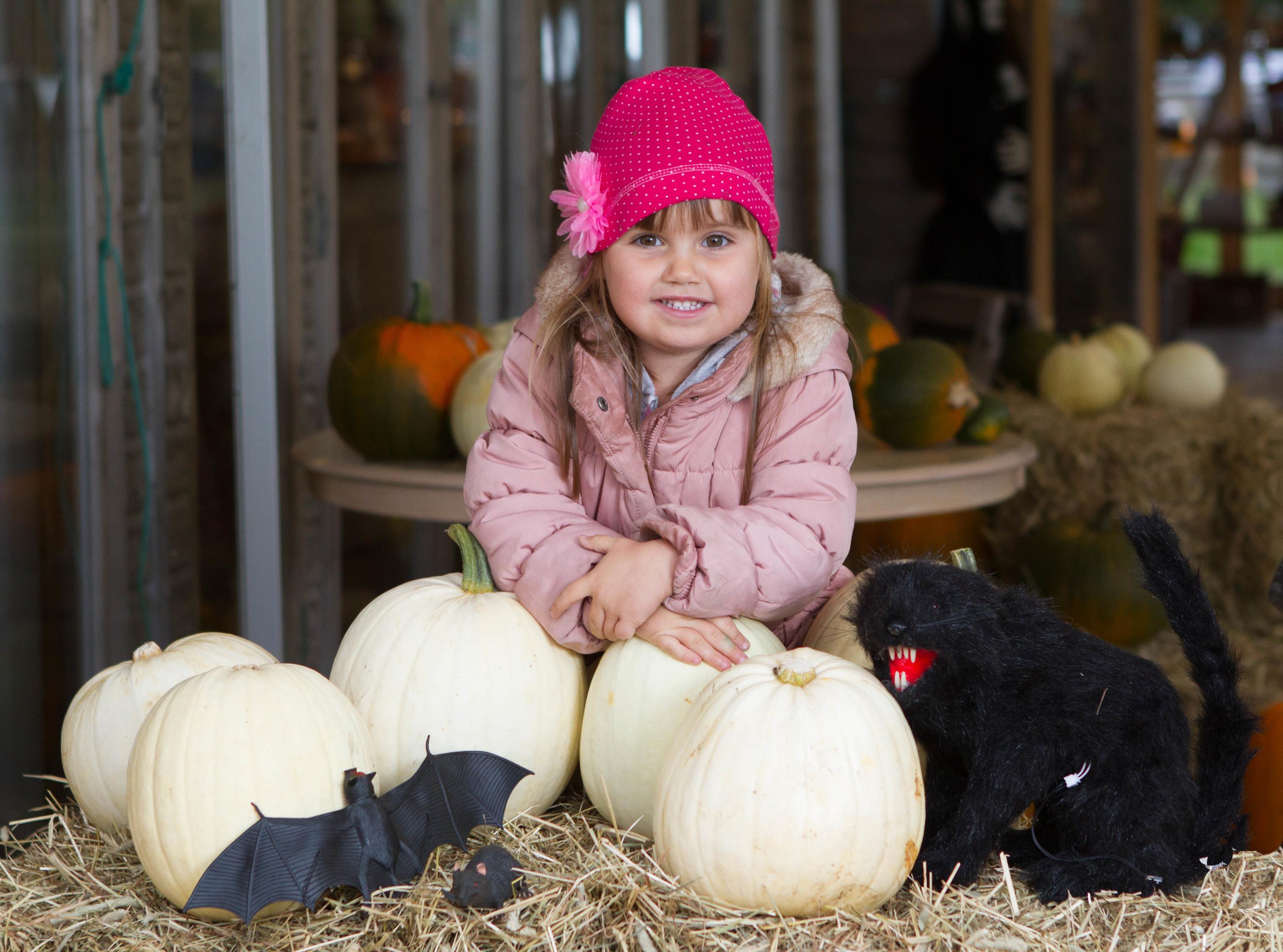 White Pumpkins at Cairnie Fruit Farm.