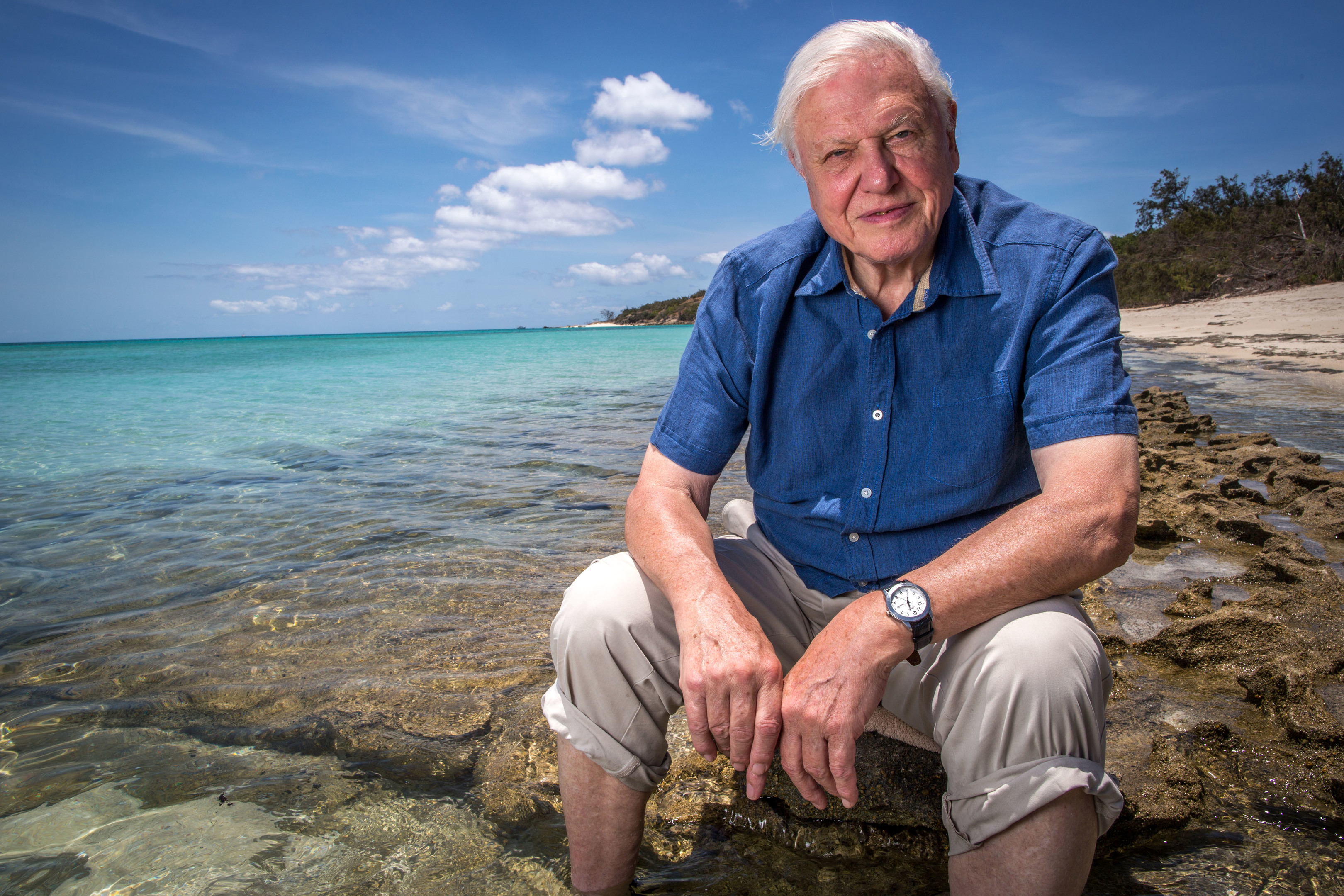 David Attenborough (BBC / Atlantic Productions)