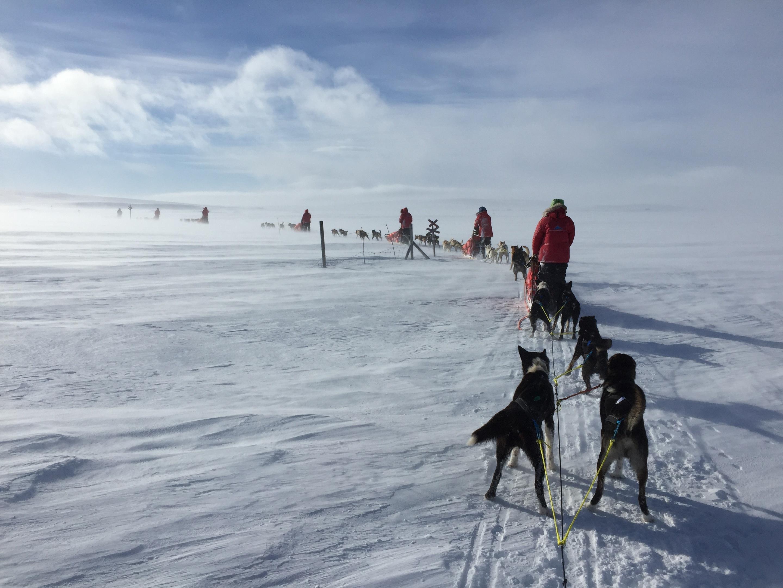 The team took their sleds across freezing Arctic terrain