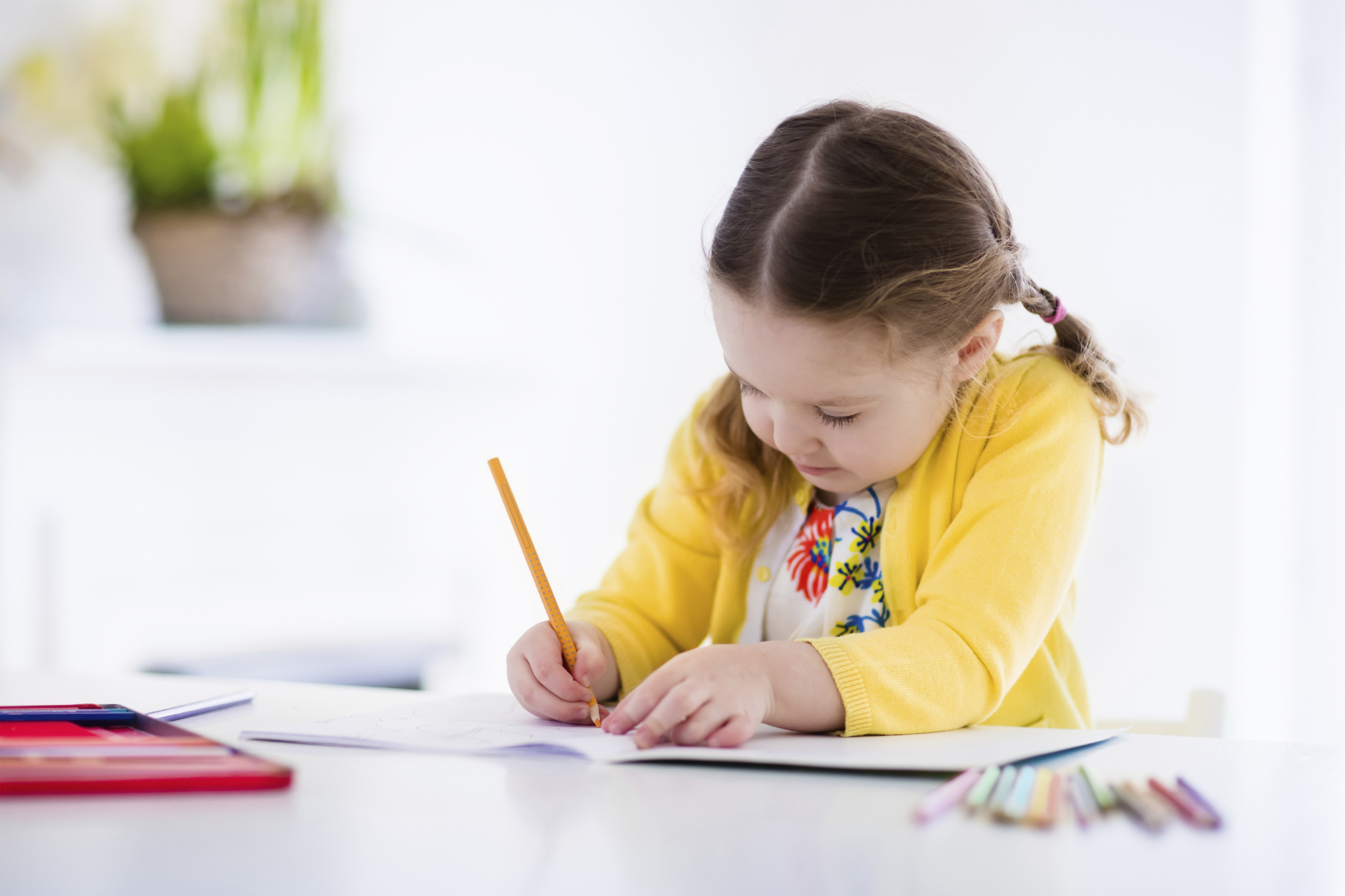 Could handwriting lessons be scrapped? (Family Veldman)