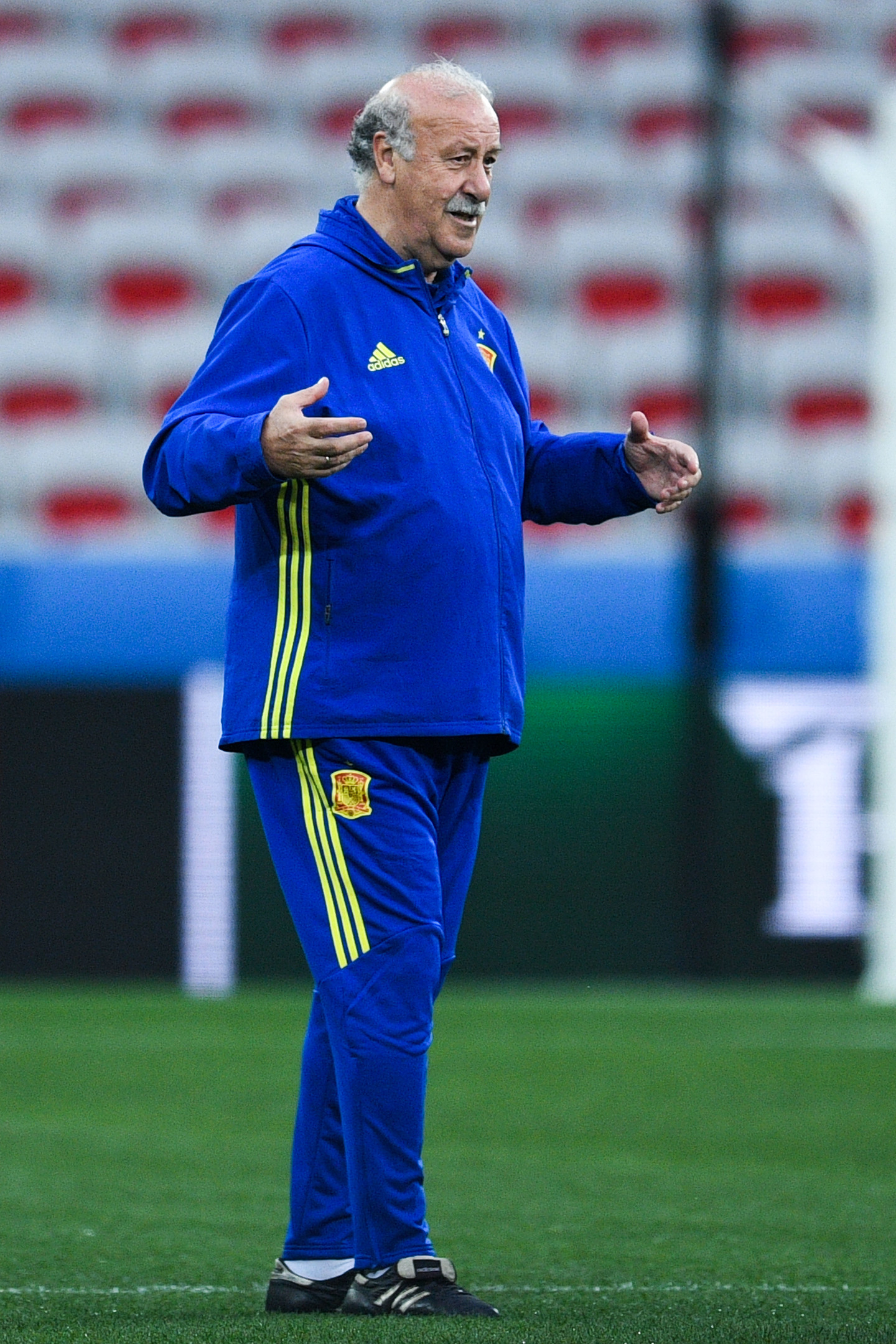 Head coach Vicente Del Bosque of Spain (David Ramos/Getty Images)