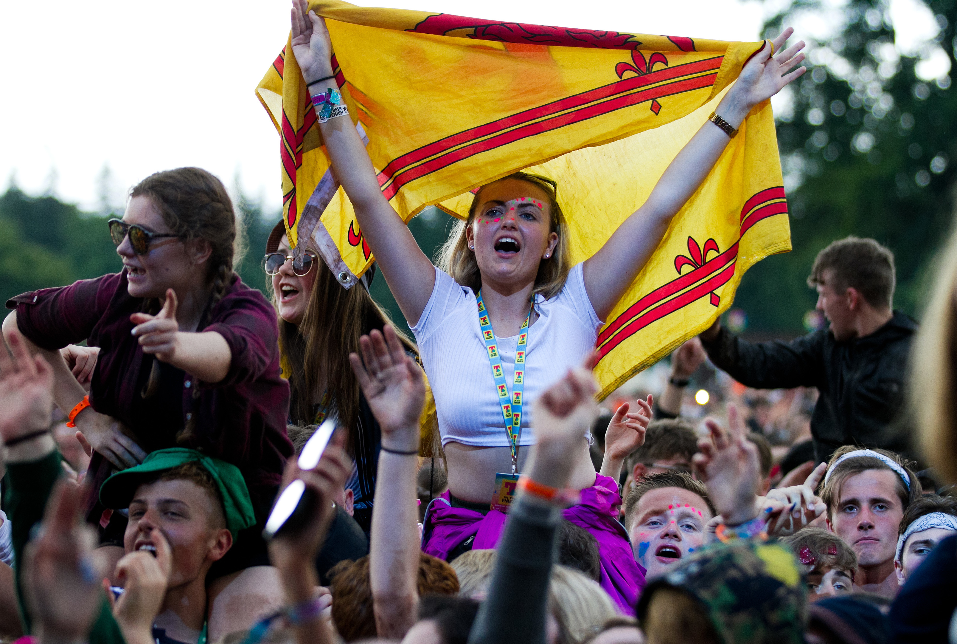 T in the Park (Andrew Cawley/DC Thomson)