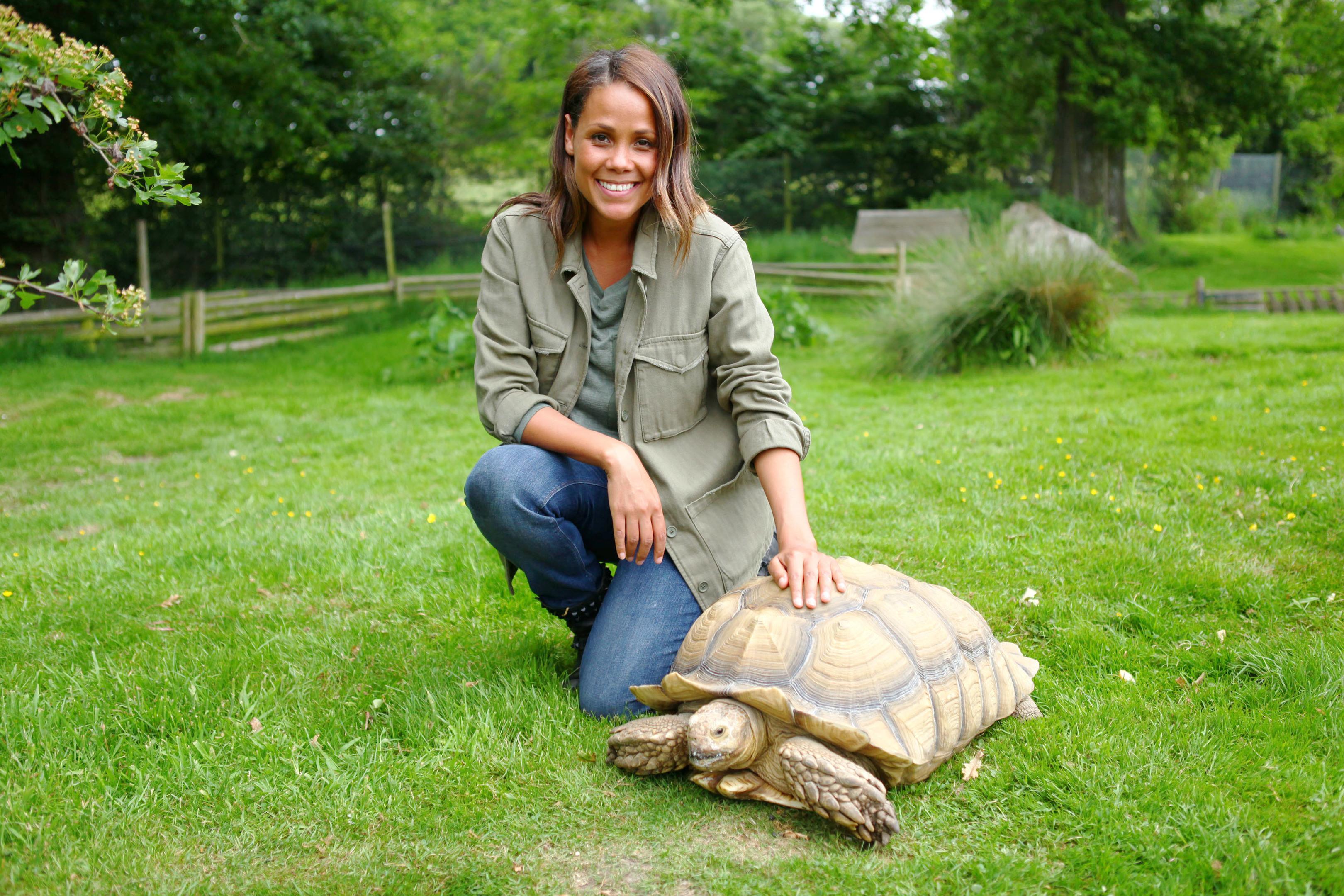 Jean Johansson with an African Spurred Tortoise (BBC/Endemol Shine UK/Joff Wilson)